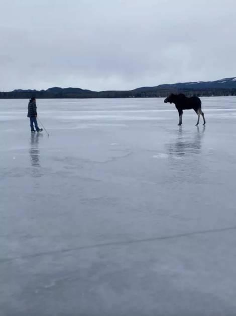 Unorignalextirpé d'un lac glacé en Colombie-Britannique