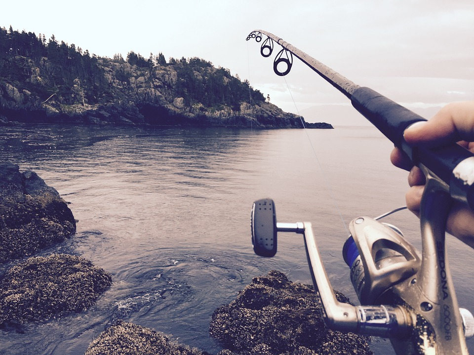 Surveillez les dates d'ouverture de la pêche récréative au poisson de fond
