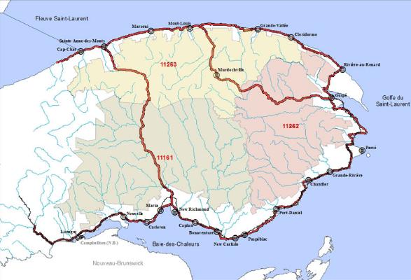 Les plans d'aménagement forestier discutés en Gaspésie-Îles-de-la-Madeleine