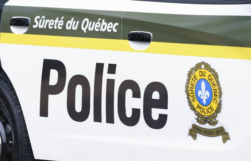 Collision mortelle avec deux orignaux en Gaspésie