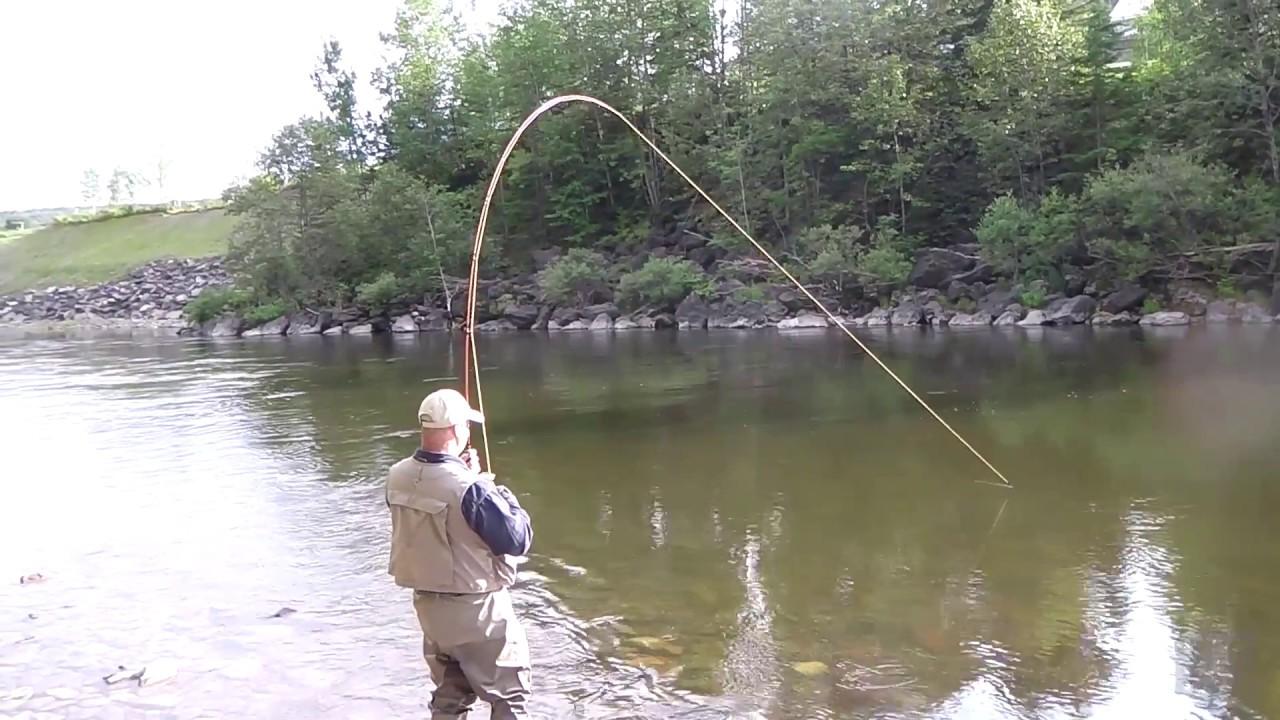 En attendant le retour de la pêche du saumon