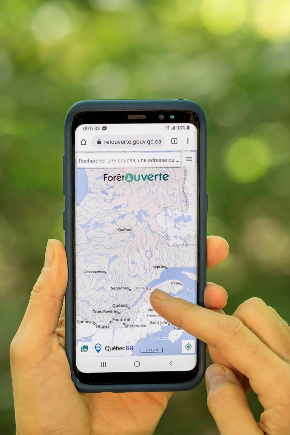 Apprenez à utiliser la carte interactive « Forêt ouverte »