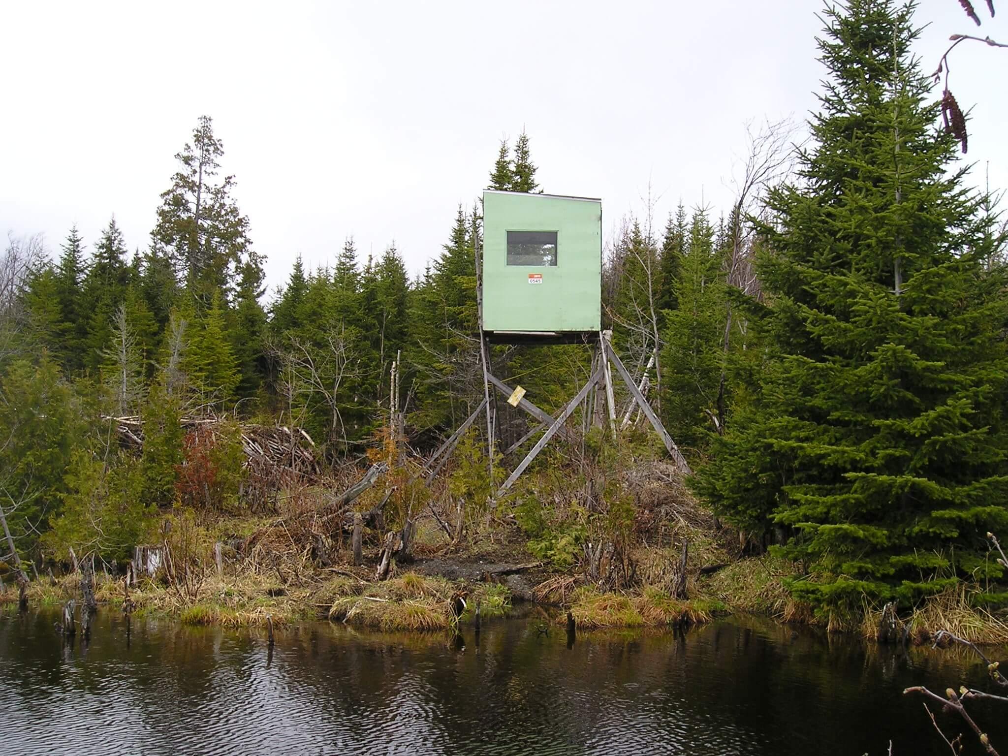 Un employé de zec peut-il aller en forêt pour localiser les caches ?