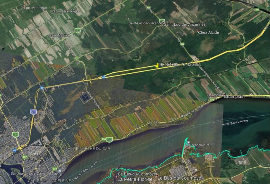 Un orignal est victime de braconnage à Trois-Rivières
