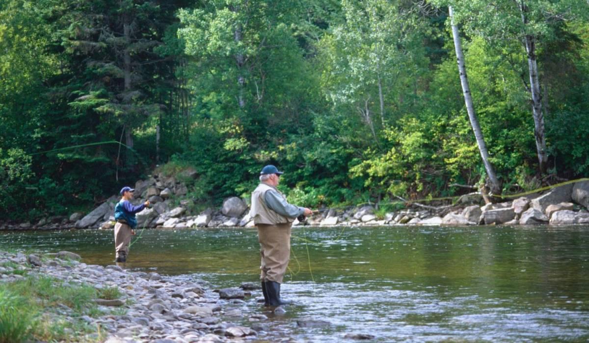 Découvrez la rivière Mitis dans toute sa splendeur