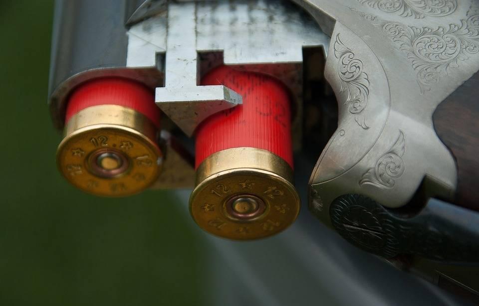 Les types de projectiles à utiliser pour le petit gibier