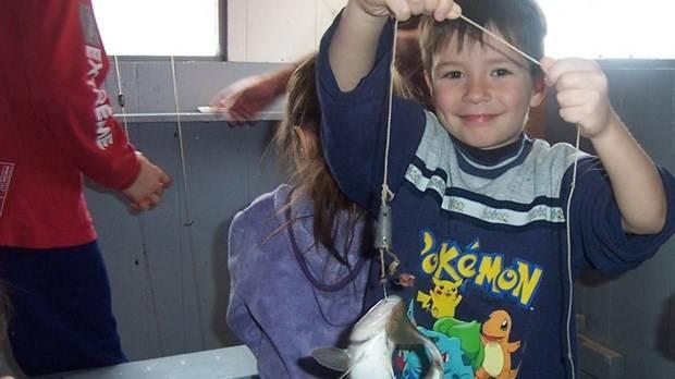 Début hâtif de la pêche du petit poisson des chenaux