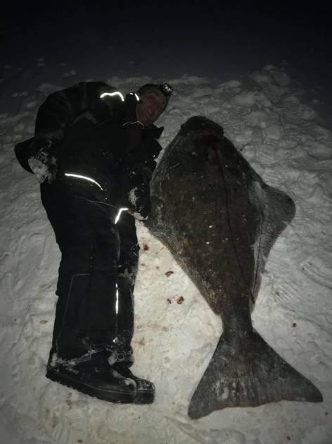 Un monstre est sorti des eaux du fjord du Saguenay