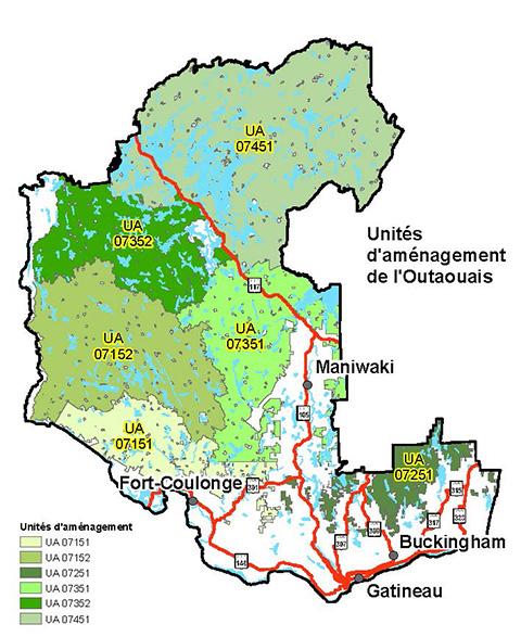 Consultation publique sur la planification forestière en Outaouais
